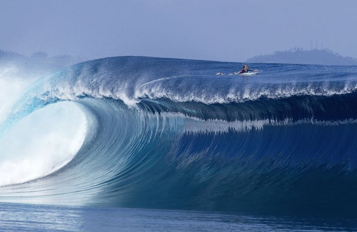 Chillin on top of a wave