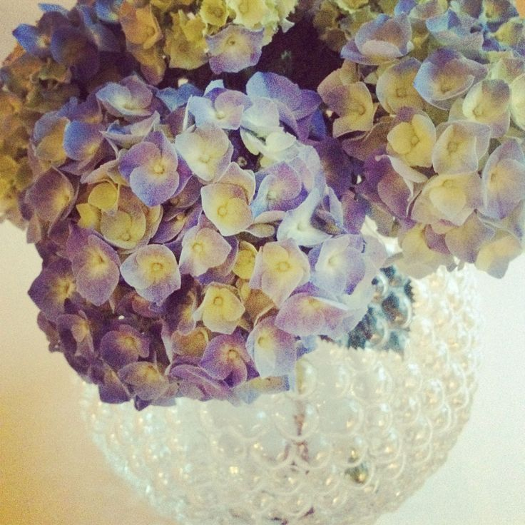 Dagg vas | svenskt tenn | flowers | Hortentia