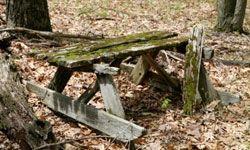 """TLC """"10 Tips for Restoring Old Furniture"""""""