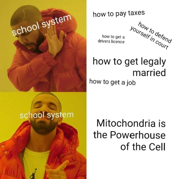 Mitochondria Is The Powerhouse Of The Cell Meme Google Search In 2020 Paying Taxes Mitochondria British Memes
