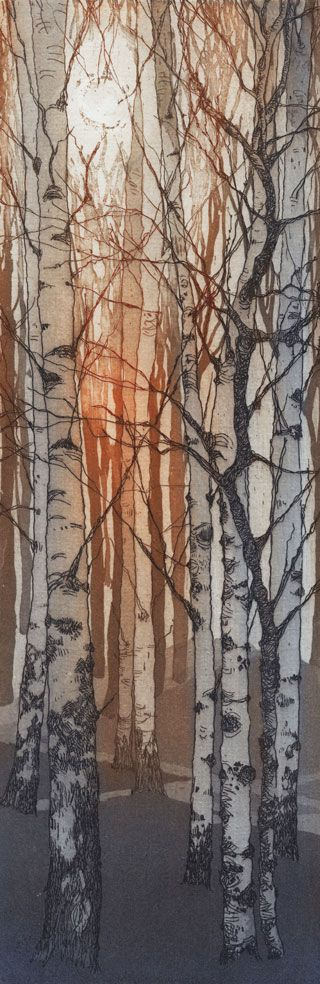 Chrissy Norman a printmaker with a passion for Trees | Chrissy Norman