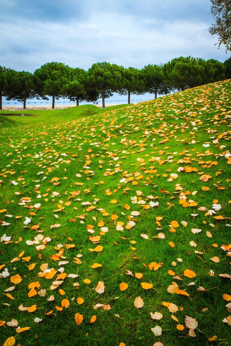 Green areas at Parque das Nações