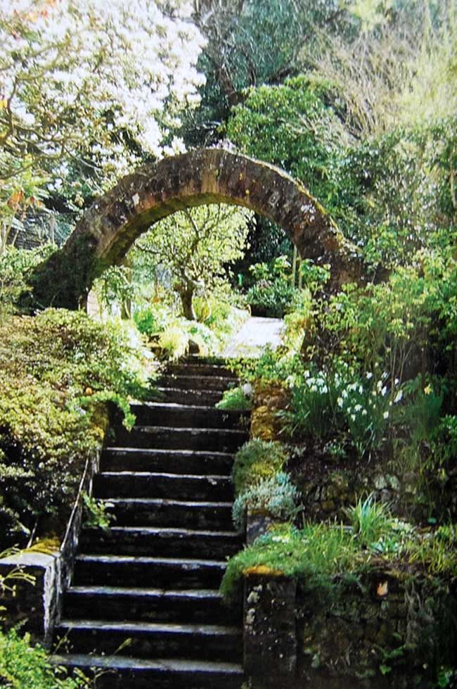 Ponds Pinterest Arches Garden Archway And Gardens