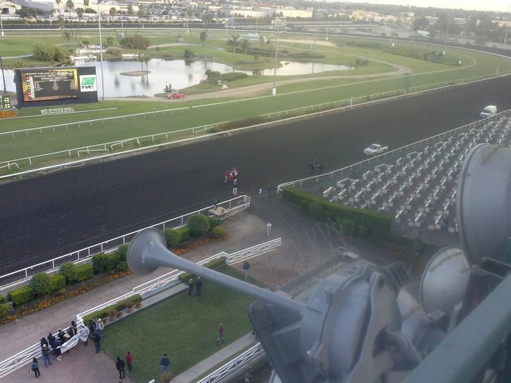 The view from the roof of Hollywood Park. (Photo: Daivd Weinberg)
