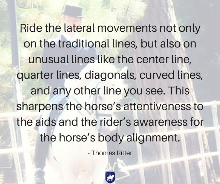 """Ride the lateral movements not only on the traditional lines, but also on unusual lines like the center line, quarter lines, diagonals, curved lines, and any other line you see. This sharpens the horse's attentiveness to the aids and the rider's awareness for the horse's body alignment."" - Thomas Ritter artisticdressage.com"