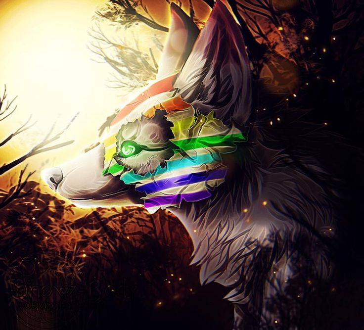 Masked Wolf