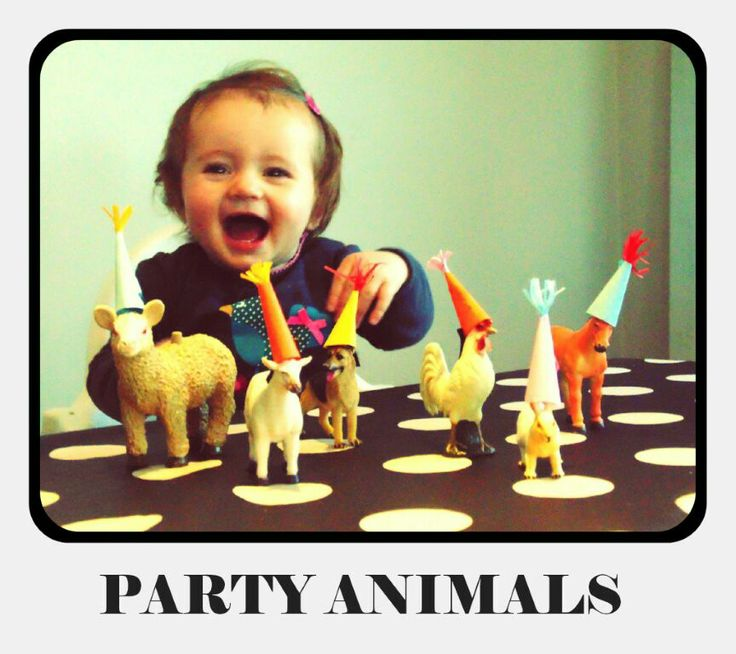 Uitnodiging party animals