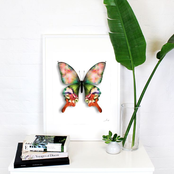 This butterfly is a play on the well loved specimen trend. Delicate pins were drawn onto the wings to create a three dimensional effect. Hand shading in bright, modern colours creates an almost opalescent effect on the paper.