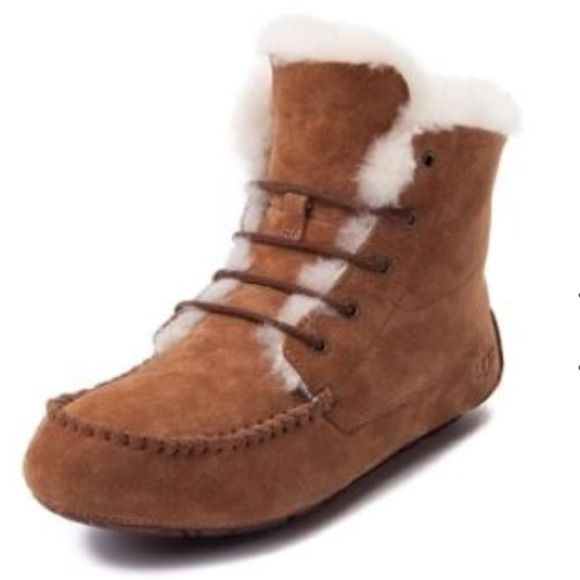 Ugg Harkley Lace Up męska
