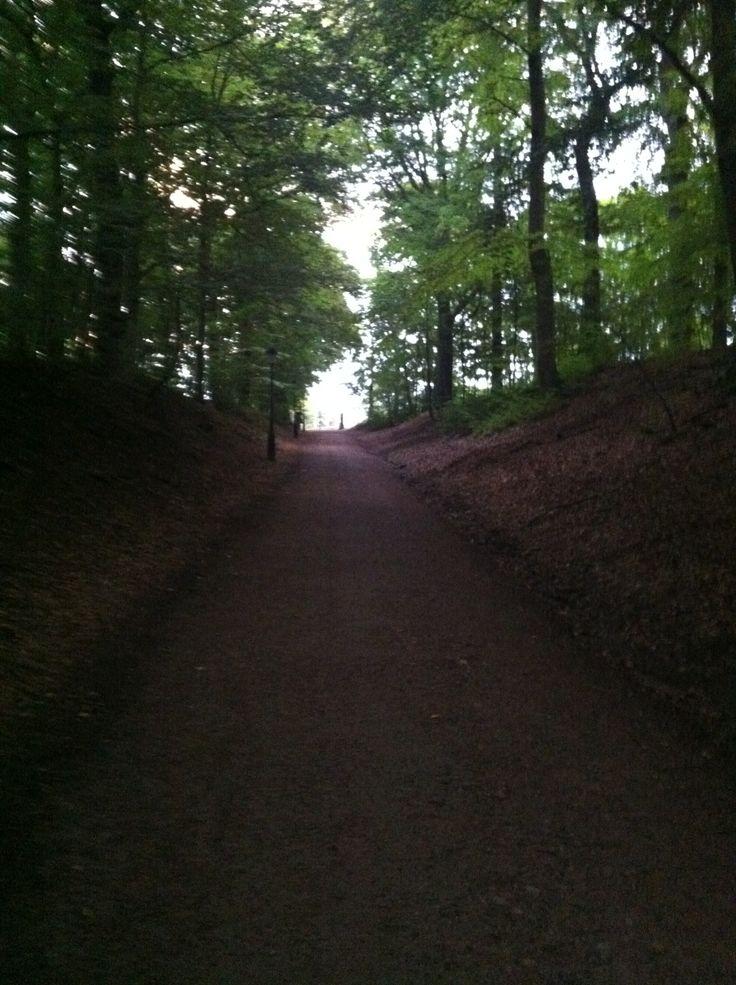 Ramlösa Brunnspark, min backe - intervallträning