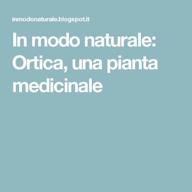 In modo naturale: Ortica, una pianta medicinale