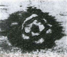 Circolo di pietre sul fondale del lago Loch-ness
