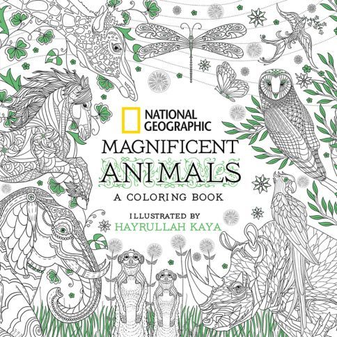 This Elegant And Soothing Coloring Book For Adults Invites Creative People Of All Ages To Dive