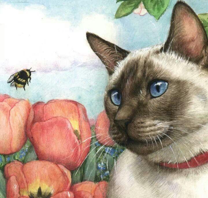 Pretty Cat Art Cute Cats Kittens Cute Art