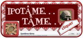 Ipotâme...tâme sur facebook - a number of links