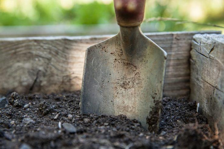 Narzędzia ogrodowe do prac jesiennych