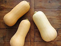 Relax, It's Just Butternut Squash