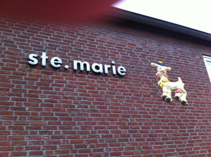 23-01-2014: Ste. Marie, Huijbergen: Voorlichting groep 7 veilig internet en Workshop Cyberpesten groep 8. I.o.v. GGD West Brabant en Bureau C&I