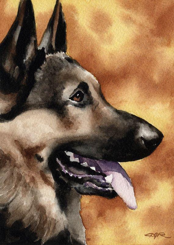 German Shepherd Abstract Watercolor Art Print by Artist DJ Rogers