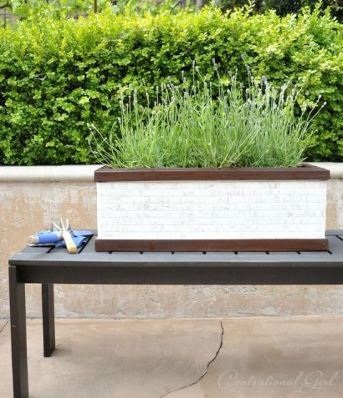 Upgrade an ordinary all-wood planter with mosaic tile sheets to make new, polished box for your backyard. Get the tutorial at Centsational Girl »
