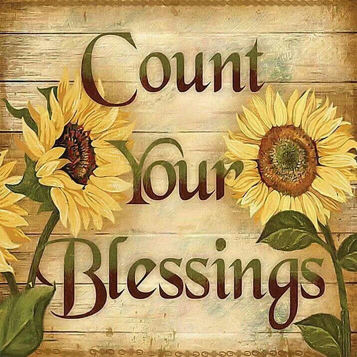 Count your blessing sunflower wall floral country art kitchen bedroom home decor
