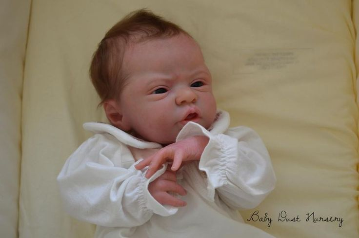 Baby Dust Nursery Reborn Doll ESME by Laura Lee Eagles SOLD OUT Modified Torso