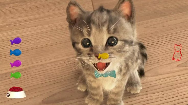Fun Pet Care Games - Little Kitten Adventures (New Update) - Play Costum...