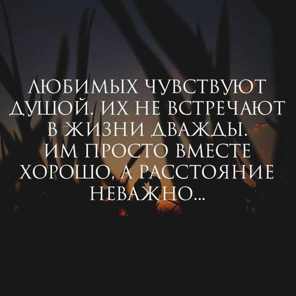 #литература #книги #образование #цитаты #статусы #стихи #зима