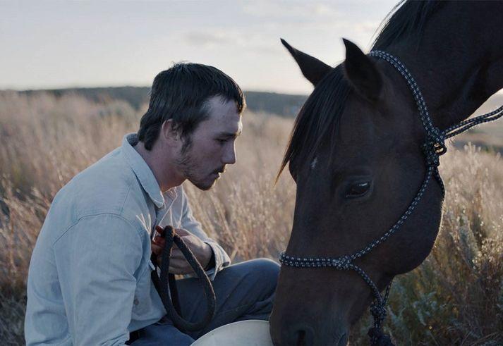 Palmarés de la 49ª Quincena de Realizadores: The Rider de Chloé Zao premio a la mejor película  Festival de Cannes 2017 Festivales Portada Relevantes