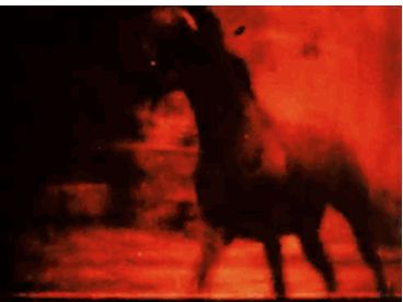 Malcolm Le Grice, Berlin Horse (1970)