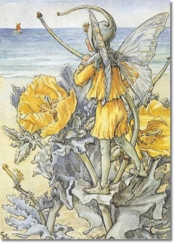 Cicely Mary Barker - Flower Fairies of the Wayside - The Horned Poppy Fairy
