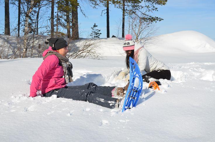 Winter activities in Kainiemi