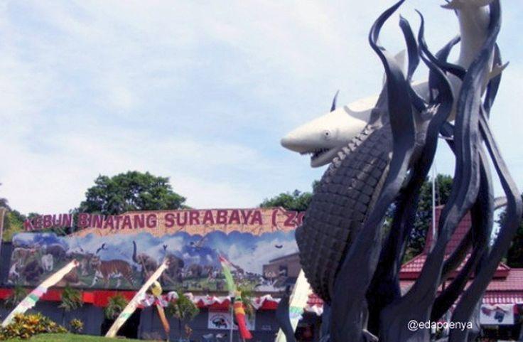 Belajar Satwa di Kebun Binatang Surabaya