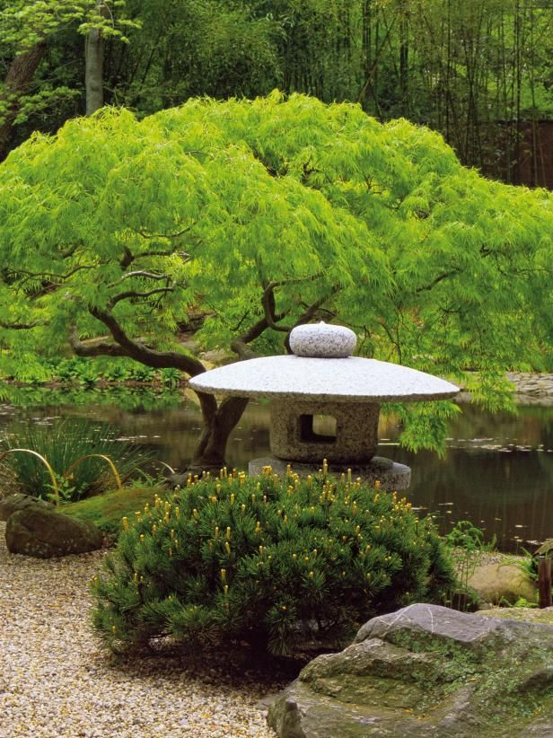 Best Images About Japanese Asian Gardens On Pinterest