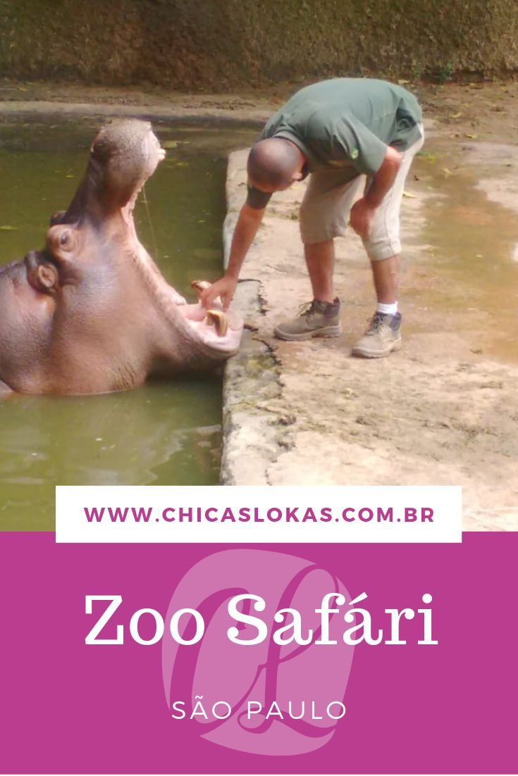 Dicas Roteiros Travel In 2019 Sao Paulo Travel Safari
