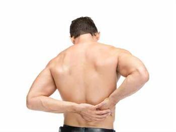 Omurga Anatomisi    Omurga anatomisi genel olarak 3 bölümde incelenir