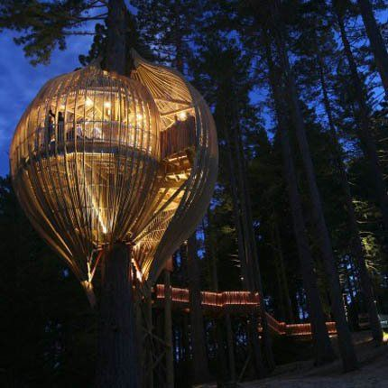 "'The Treehouse, a restaurant-hut.  The challenge to the New Zealand Agency "" Pacific Environments Architects "" was to design a restaurant in a tree. The "" Treehouse Redwoods ""is a kind of giant pod suspended which is accessed by a long bridge. This totally unusual and unique restaurant is housed in the redwoods and can accommodate up to 50 people. Today and for the delight of nature lovers, this cabin is fast becoming a place available for hire.'  By: marieclairemaison..."