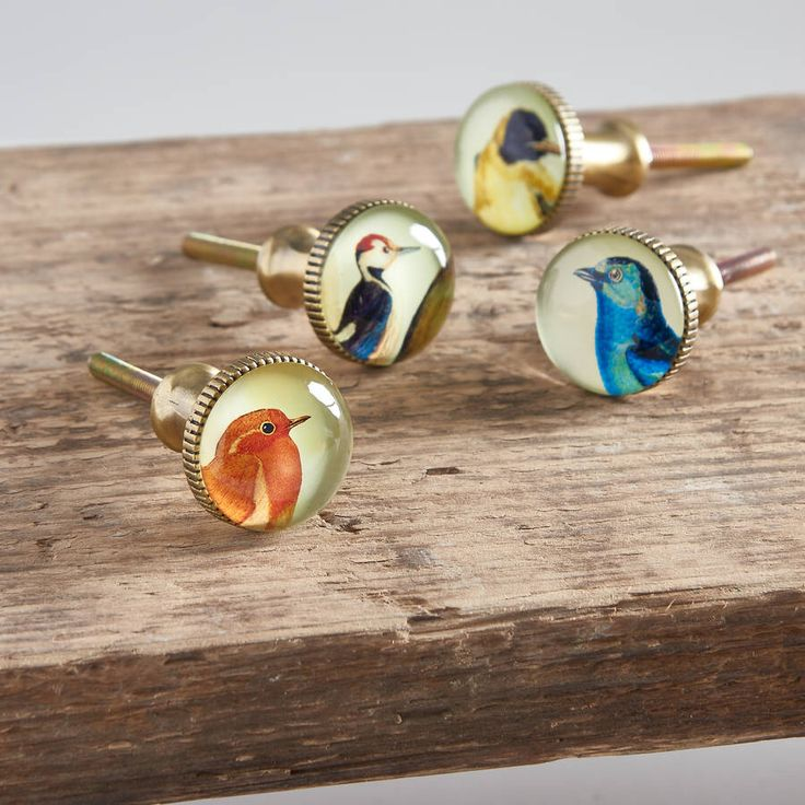 I've just found Set Of Four Brass And Glass Bird Knobs. Each glass bird knob has a different image and a brass fitting. A great way to totally transform a piece of furniture.  Approx. 3cm diameter (4cm screw). £20.00
