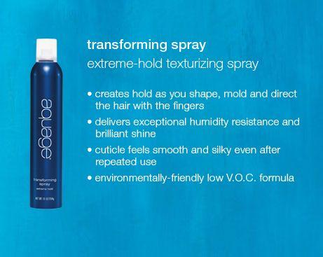 Aquage Transforming Spray