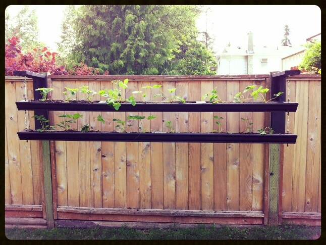 Diy Hanging Garden Planters Made From Old Gutters They