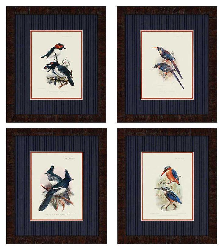 Keulemans, Birds Pk/4 | One Kings Lane