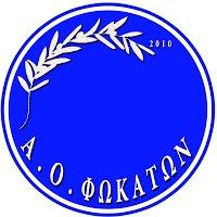 Α.Ο. Φωκάτα - Κάλεσμα για Γενική Συνέλευση για το αν θα συνεχίσουν ή θα αποχωρήσουν από το πρωτάθλημα - Νεα, Γενικες πληροφοριες.