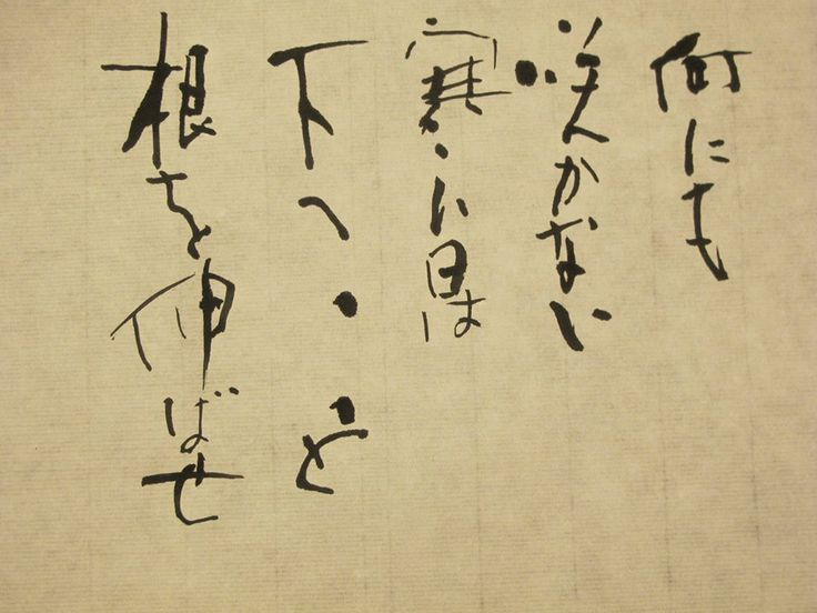 Best images about calligraphy on pinterest buddhism