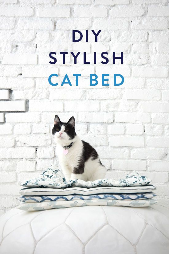 Elegant Make Your Furry Friend A Stylish Cat Bed That They Will Love. Design Inspirations