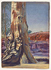 River Red Gum (Eucalyptus camaldulensis) in Creek (perhaps Finke River - usually dry), West Macdonnell Ranges, Central Australia, Northern Territory - Albert Namatjira 1902 - 1959 - Google Search