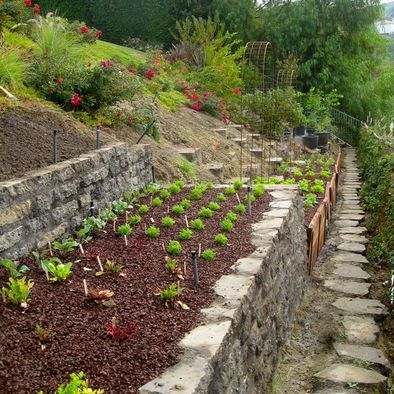 Landscaping Ideas For Sloping Gardens sloped landscape design ideas designrulz 2 Sloping Garden Design Pictures Remodel Decor And Ideas