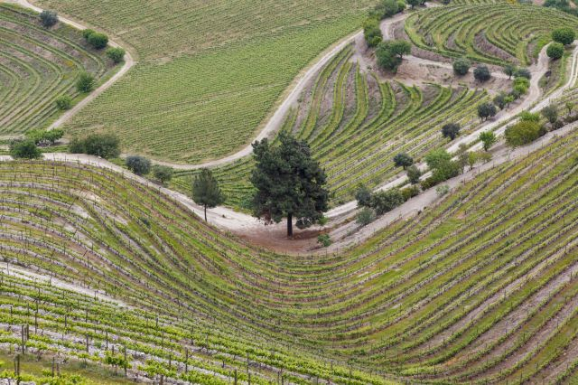 (Ken Welsh via Getty Images) Europe's Funniest Place Names: Fail, Portugal - You don't need good grades to be able to appreciate all that Fail has to offer. The grapes in this area are firmly founded in Hispanic roots and this is expressed in the fruitful wine industry, particularly Dão. This region is one of the oldest established wine regions in Portugal and with numerous acclaimed wine tours available.
