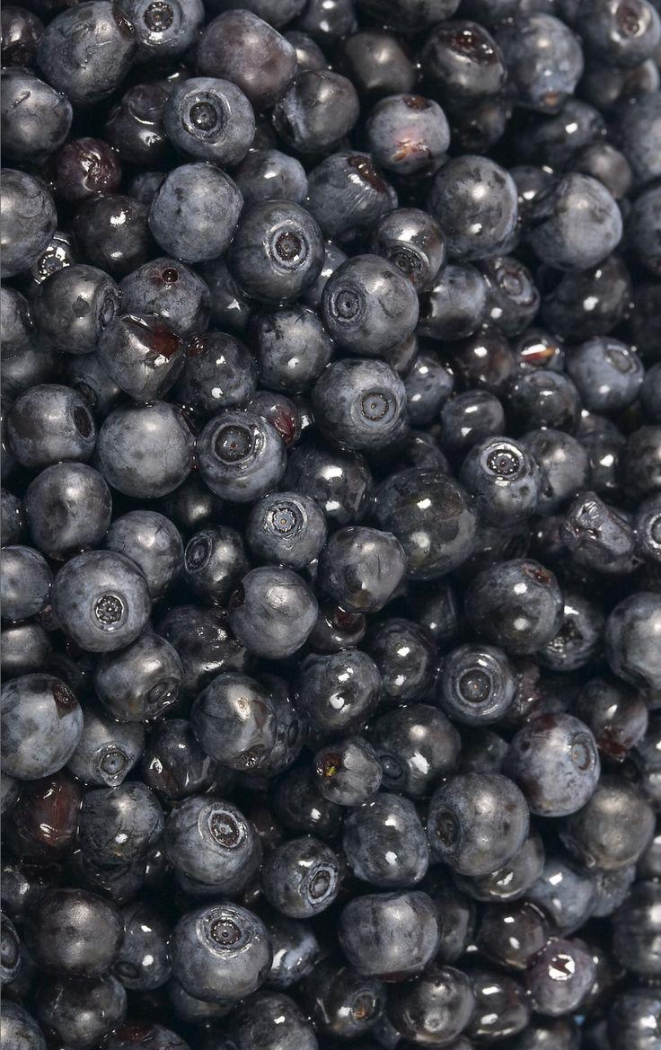 Blueberries Mustikka metsästä