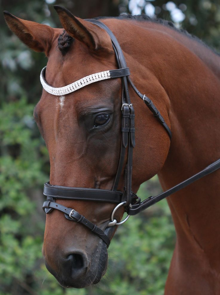 Flexi-Fit Gel English Leather Havana and Stailess Steel Fittings Mix & Match Bridle #ffequestrian#blingbridle#dressage