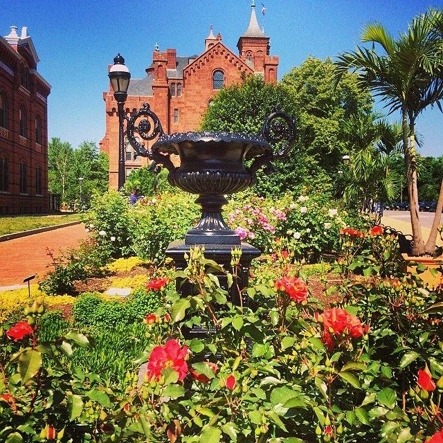 Rose Garden Freeman Gardens: The Folger Rose Garden Next To The Smithsonian Castle